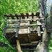 Casetta sull'albero all'Alpe Casavei