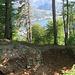 Resti delle fortificazioni della Linea Cadorna.
