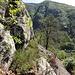 Auf dem Felsband (Ponte Brolla)