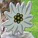 Nette Edelweis-Idee für den Garten - sucht noch wer ein Muttertagsgeschenk?