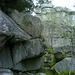 Aufi geht's auf die gut 10m hohe (vordere) Felsgruppe.
