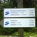 Jetzt geht wieder zurück zum Parkplatz über die Burgruine Weißenstein.