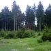 Nichtsagendes Foto von unterwegs - macht nur Sinn [http://www.hikr.org/gallery/photo422857.html?post_id=31316#1 mit ...]