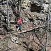 ... doch bei rutschgefährdeten Stellen dienen Steg und Seil als Unterstützung