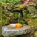 Kleine Quelle an der Lourdesgrotte