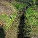 Suone Tambalmuwasser, vorläufig nur vom Seitenbach gespiesen