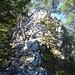 der bekannte, einfache Schlussanstieg zum Gipfel