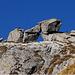 particolare formazione rocciosa in prossimità della vetta...