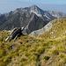 panorama sul monte Altissimo dalla vetta del monte Freddone...