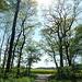 Kammer Busch: Hier der [http://www.hikr.org/gallery/photo709004.html?post_id=46238#1 Wintervergleich]!
