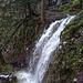 Viel Wasser führt der Chesselbach