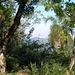 Der Cerro Tres Kandú im Hintergrund