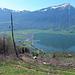 Improvisierter Mast für die Forstseilbahn. Zudem Rigi über dem Zugersee.