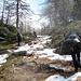 salendo nella valletta con la neve