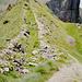 Der Weg führt entlang der Schützengräben aus dem 1. Weltkrieg.