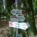 Viele Wege führen nach ... naja der Plößberg ist nicht ausgeschildert. Man wendet sich nach rechts 'Zuweg' - Richtung Marktredwitzer Haus