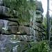 Etwas 400m ostwärts verbirg sich eine weitere mächtige Felsgruppe im Wald.