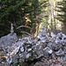 Herzliche Holzschlangen von mythischen Steinmännlis umrundet
