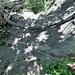 auf der anderen Seite blanker Fels!!