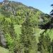 Die Auffahrtsrampe für die Mountainbikestrecke auf den Schnappen