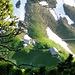 Tiefblick zur Alp Mans vom Südgrat.