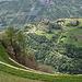Tief unten Schloss Juval - Reinhold Messners Revier