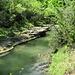 still fließt hier der Fluss