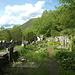 San Lorenzo: sogar der Friedhof verwildert (die Gräber sind auch über 50 Jahre alt)...