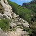 natürliche Stufen
