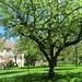 ...und sein kleiner, idyllischer Schlossgarten