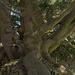 Ein Baum aus der Welt der Gebrüder Grimm