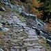 Alpstrasse zur Forcoletta