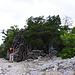 Cuile Su Runcu, Hirtenhütte