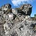 Der nordseitige Kamm des Schwaigberghorns wartet mit einem kleinen Zähnchen auf. Mindestens T2, wenn nicht noch leichter !