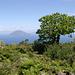 Im Abstieg oberhalb von Montagna