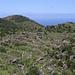 Der eigentliche Krater wurde vor Jahrhunderten kultiviert. Der Anstieg zum Gipfel führt über viele Trockenmauern.