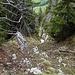 Auch Alpinbachi hat hier ein Photo gemacht ;-)