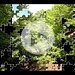 Dall'allievo Gabri al maestro Paolino il primo tentativo di video della Inmontagnacongabriesuni Production (srl in fase di costituzione eh eh) .... La musica è ovviamente dedicata a [u Angy]