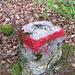"""Abseits der ausgeschilderten Wanderroute, aber entlang eines kartierten Pfades (sh. auch erstes Foto) befanden sich die roten Markierungen an solchen Steinen. Leider habe ich den Abzweig zwischen den Felsen hindurch an die Donau verpasst und musste so auf einem Forstweg absteigen<br /><br />Edit 19.03.2014: Heute habe ich den """"Jägerpfad"""" ausfindig gemacht, sh. [http://www.hikr.org/tour/post77866.html Bericht]"""