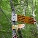 <b>Carbonera (1033 m).<br />Nei boschi del Canton Ticino un tempo erano molto diffuse le carbonaie dove i boscaioli carbonizzavano la legna.</b>