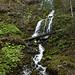 Kleiner Wasserfall im Allgäuer Nagelfluh