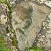 """<br />Wie oben so unten<br />Die Wolken in den Gunten<br />_____________________________<br />_____________<br /><br />♩♫♪...Keep my feet on the ground and my head in the clouds...♬♫♪♩<br /><br />(Matisyahu)<br />[http://www.youtube.com/watch?v=iP0glhn5ssM]<br />___________<br /><br />♩♫♩...With my feet on the ground & my head in the clouds...♬♫♩<br /><br />(Motörhead)<br />[http://www.youtube.com/watch?v=3lSFzJlOyLY]<br />___________________________________<br /><br />Die Wolken am Himmel oben spiegeln sich in einer Gunte im 'Valle di Blenio' unten.<br /><br />""""Das ist ja der Megahammer"""", sagte ich zu mir selber,<br />""""wie kommen die grossen Wolken in diese kleine Gunte? Und wie geht es weiter?""""<br />______________________________________________<br /><br /><br />Die Reise der Wolken:<br /><br />Vom Himmel in die Gunte (im Valle di Blenio),<br />von dort in meine Kamera,<br />von meiner Kamera durch ein Kabel in meinen Compi,<br />von meinem Compi auf den neuen Server von Anna und Stani,<br />von dort auf die Bildschirme von den Leuten, die online sind,<br />von dort in die Augen von einigen Betrachtern, die das Foto anklicken,<br />von den Augen der Betrachter in ihre grauen Zellen,<br />von den grauen Zellen in die Gedanken.<br />Was dann passiert, weiss ich nicht: """"Die Gedanken sind frei"""" (Deutsches Volkslied)<br /><br />_________________________________________________________<br />___________________________________________________<br /><br /><br />'Wie oben so unten' ist ein Spruch von Hermes Trismegistos. <br />Das war ein Magier im alten Ägypten.<br /><br />_____________________________________________<br /><br /><br />""""Die Wolken in den Gunten"""" ist aber nicht von Hermes Trismegistos, <br />sondern von mir :-).<br />_______________________________________<br />______________________<br /><br /><br />"""