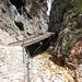 Der schöne Knüppelweg verläuft hin und wieder auf Holzstegen über den schluchtartigen Einschnitt des Schlernbaches