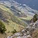 Tiefblick vom Gipfel auf Boltigen