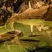 In der Orbegrotte, Smaragdsee