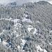 Blick von Truvaschina nach NE: Detailansicht im frischverschneiten Valser Tobel, Überblick im nächsten Bild.