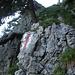 leichte Kletterei in der Steilstufe kurz vor Geisskappel