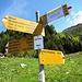 Alpe Domas