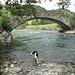 Timi ist froh, dass es häufig dem Wasser entlang geht