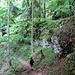 Abstieg Richtung Felsengalerie